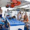 snorkeling 22