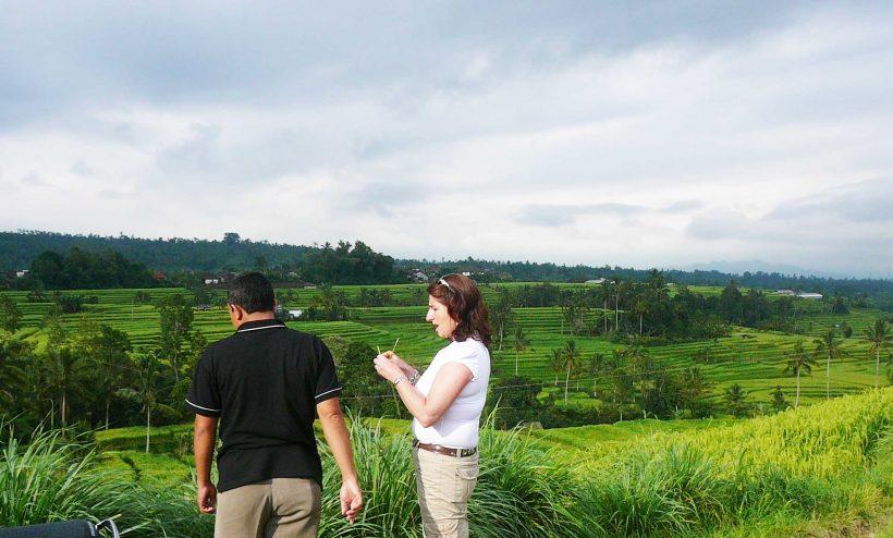 Jati-Luwih-rice-Terrace-1