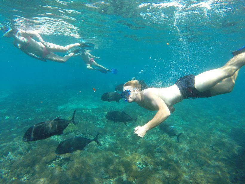 GT point snorkeling